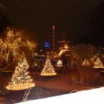 Lights at Tivoli!